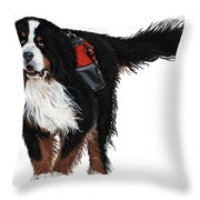 Winter Trails Throw Pillow by Liane Weyers