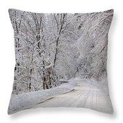 Winter Travel Throw Pillow