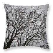 Winter Tree 6 Throw Pillow