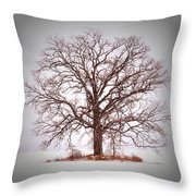 Winter Tree 8x10 Crop With White Bars Throw Pillow