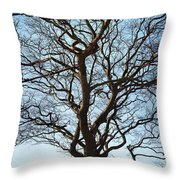 Winter Tree Throw Pillow