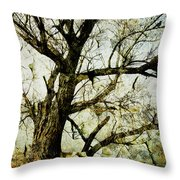 Winter Tree At The  Lake Shore  Throw Pillow by Ann Powell