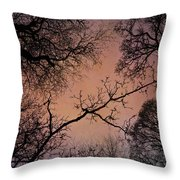 Winter Tree Canopy Throw Pillow