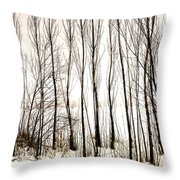 Winter Tree Fence 13283 Throw Pillow