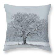 Winter Tree Ipswich Ma Throw Pillow