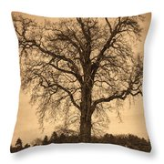 Winter Tree - Old Throw Pillow