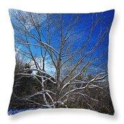 Winter Tree On Sky Throw Pillow