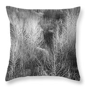Winter Trees  B And W 1 Throw Pillow