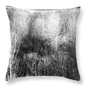 Winter Trees B And W 5 Throw Pillow