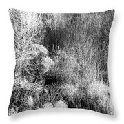 Winter Trees B And W 6 Throw Pillow
