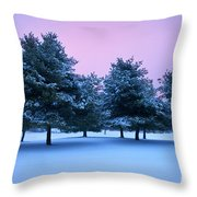 Winter Trees Throw Pillow by Brian Jannsen