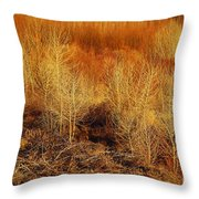 Winter Trees Color 3 Throw Pillow
