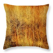 Winter Trees Color 4 Throw Pillow