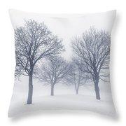 Winter Trees In Fog Throw Pillow by Elena Elisseeva