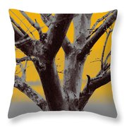 Winter Trees In Yellow Gray Mist 2 Throw Pillow