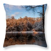 Winter Trees Lake Reflected Throw Pillow