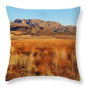 Winter Trees Landscape 1 Throw Pillow