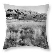 Winter Trees Landscape Throw Pillow