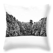 Winter Trees Mink Brook Hanover Nh Throw Pillow