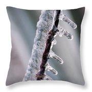 Winter Twig Throw Pillow