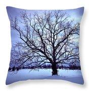 Winter Twilight Tree Throw Pillow