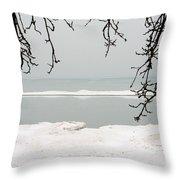Winter Under The Apple Tree Throw Pillow