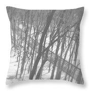 Winter Urban Wood Throw Pillow