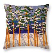 Winter Valley Throw Pillow