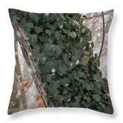 Winter Vine Throw Pillow