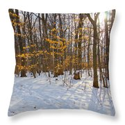 Winter Walk Throw Pillow