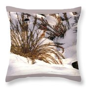 Winter Weeds Throw Pillow