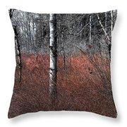 Winter Wetland I Throw Pillow