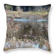 Winter Wetlands Of Alabama Throw Pillow