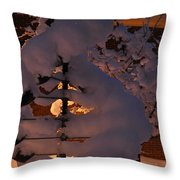 Winter Whirligig Throw Pillow