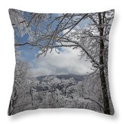 Winter Window Wonder Throw Pillow
