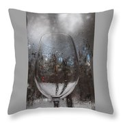 Winter Wine Throw Pillow