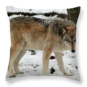 Winter Wolf In The Snow Throw Pillow