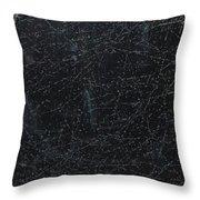 Winter Wonder Land Throw Pillow