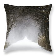 Winter Wonder Snow Tunnel Of Trees Throw Pillow