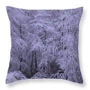 Winter Wonderland 1 Throw Pillow by Mike McGlothlen