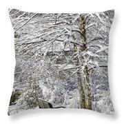Winter Wonderland 9 Throw Pillow