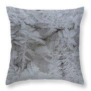 Winter Wonderland Series #01 Throw Pillow