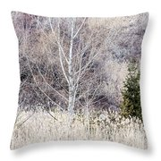 Winter Woodland With Subdued Colors Throw Pillow