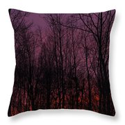 Winter Woods Sunset Throw Pillow