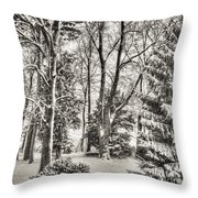 Winter Zauber 03 Throw Pillow