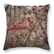 Winterberries Squared Throw Pillow