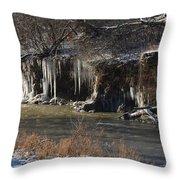 Winter's Artwork Throw Pillow