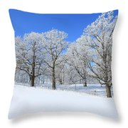 Winter's Best Throw Pillow