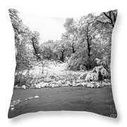 Winter's Blanket 2 Throw Pillow