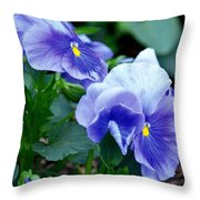 Winter's Blue Pansies Throw Pillow
